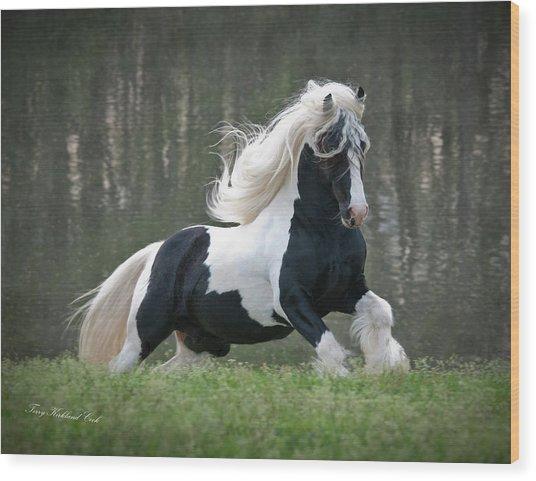 Breathtaking Stallion Wood Print