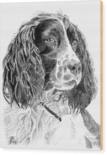 Brecon Wood Print