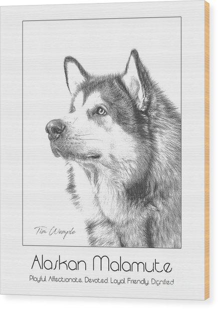 Breed Poster Alaskan Malamute Wood Print by Tim Wemple