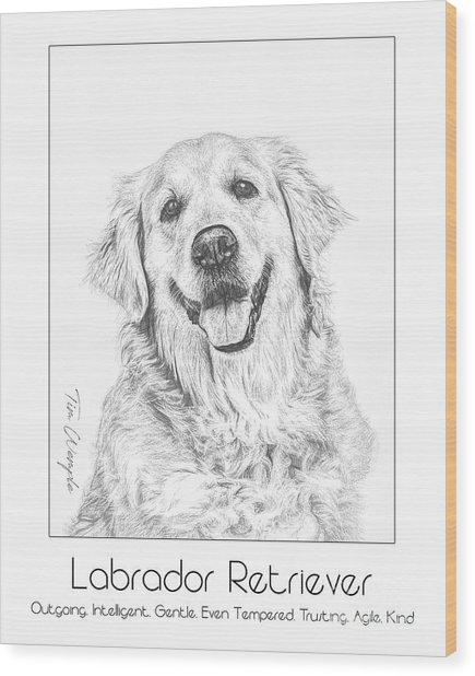 Breed Poster Labrador Retriever Wood Print by Tim Wemple