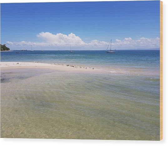 Bribie Waters Wood Print