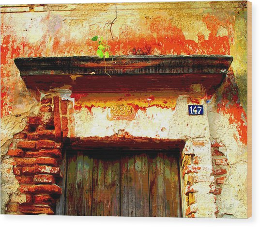 Brick And Wood By Darian Day Wood Print by Mexicolors Art Photography