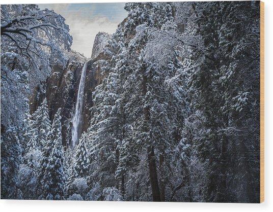 Bridal Veil Falls In Winter Wood Print