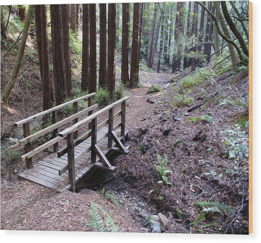 Bridge In The Redwoods Wood Print