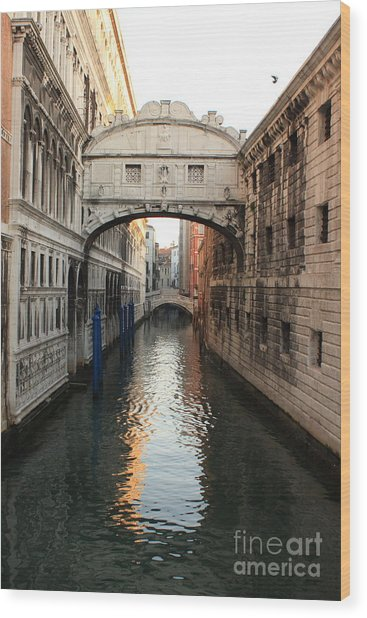 Bridge Of Sighs In Venice In Morning Light Wood Print by Michael Henderson