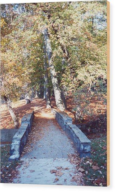 Bridge On The Path Wood Print