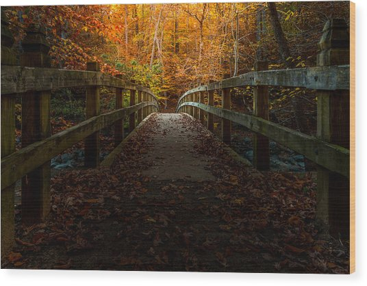 Bridge To Enlightenment Wood Print