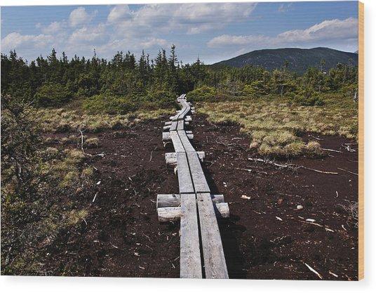 Bridge To Mizpah Wood Print