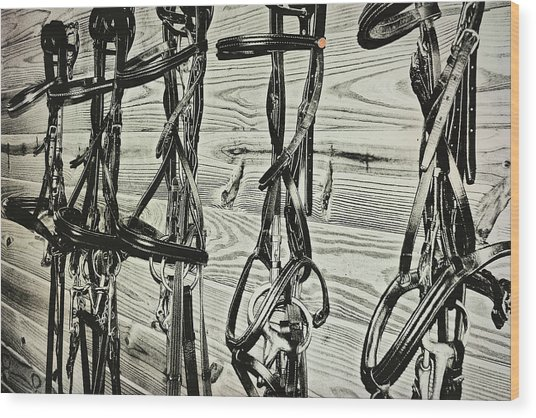 Bridled Dressage Wood Print