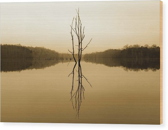 Briery Creek  Wood Print