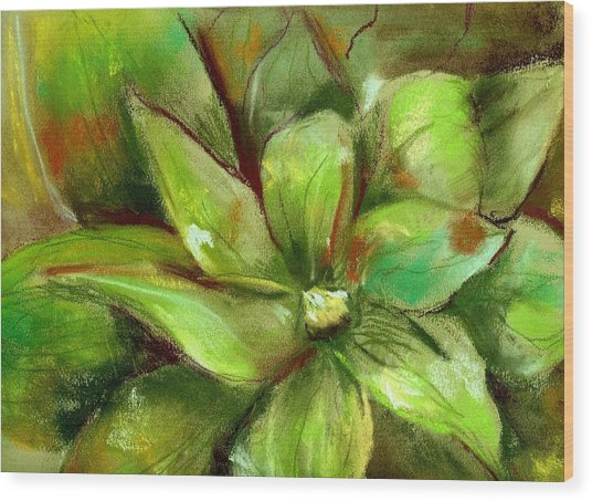 Bright Agave Wood Print by Marilyn Barton