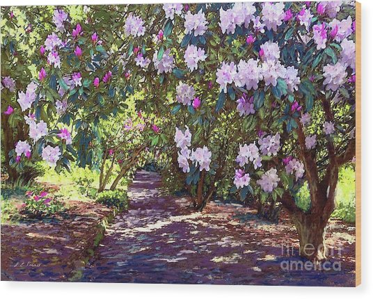 Bright And Beautiful Spring Blossom Wood Print