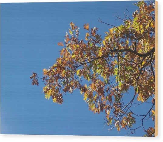 Bright Autumn Branch Wood Print