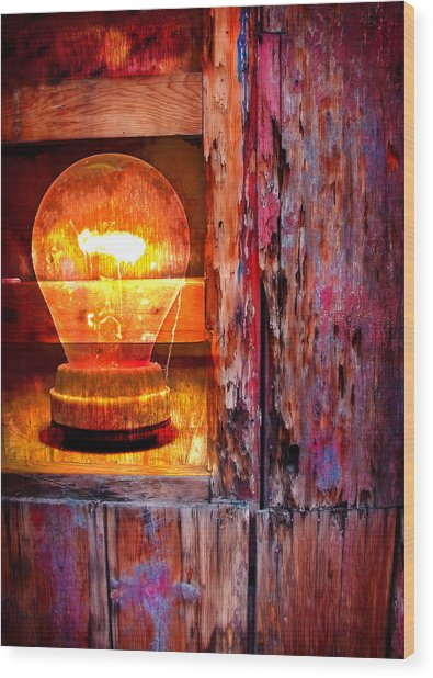 Wood Print featuring the photograph Bright Idea by Skip Hunt