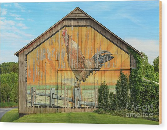 Bright Rooster Barn Wood Print