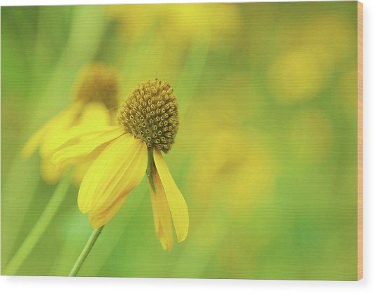 Bright Yellow Flower Wood Print