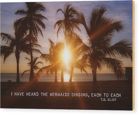 Brilliance Quote Wood Print by JAMART Photography