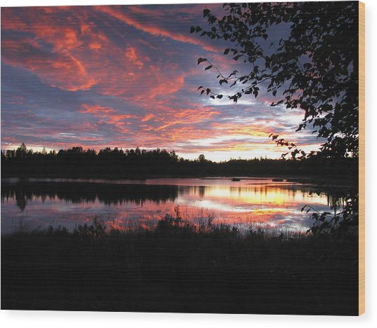Brilliant Sunset Framed By Tree Wood Print