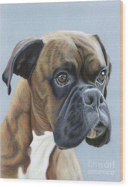 Wood Print featuring the painting Brindle Boxer Dog - Jack by Donna Mulley