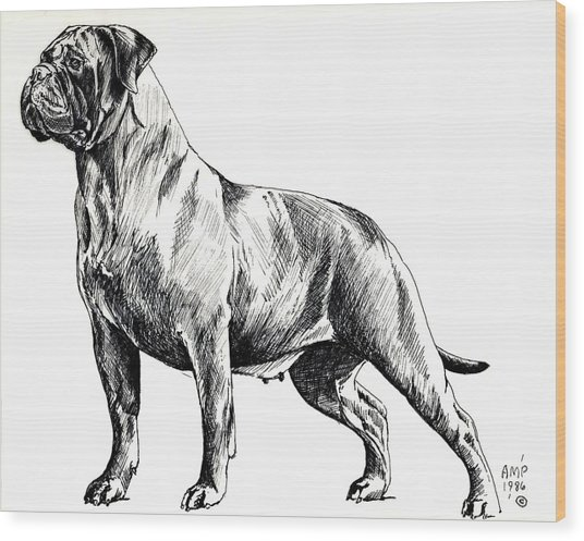 Brindle Girl Wood Print