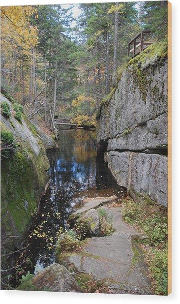 Broken Wood Print by Clay Peters Photograhy