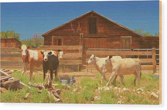 Broken Corral Winona Arizona Wood Print by Gus McCrea