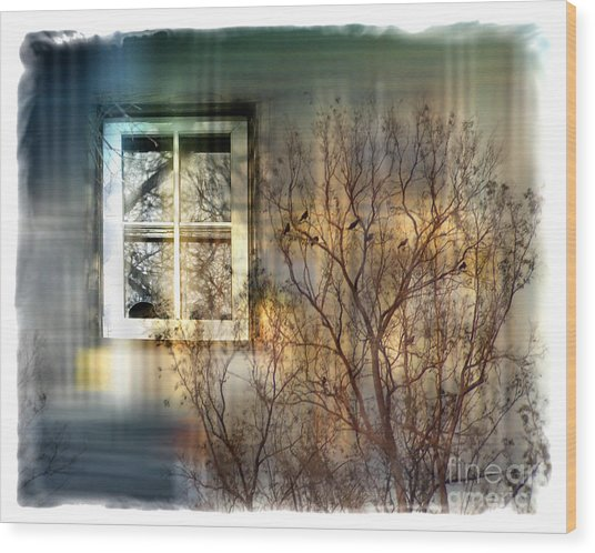 Broken Dreams Wood Print by Chuck Brittenham