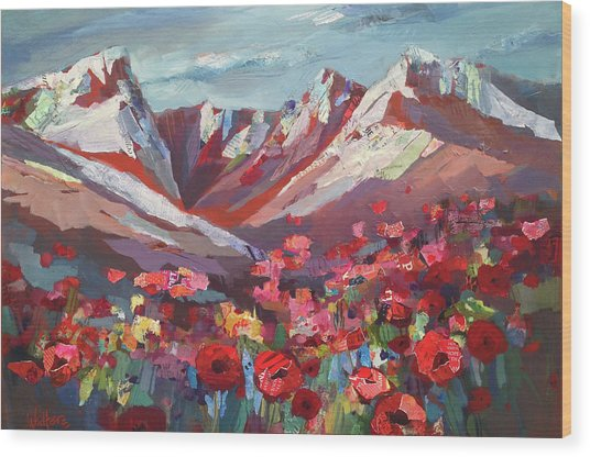 Broken Top Wildflowers Wood Print