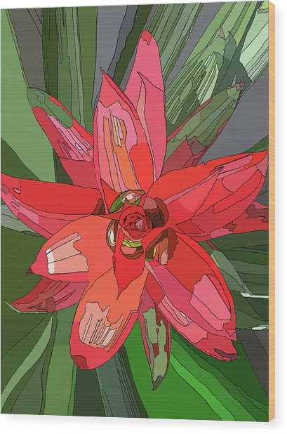 Bromiliad Wood Print