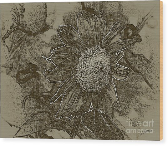 Bronzed Out Sunflower Wood Print