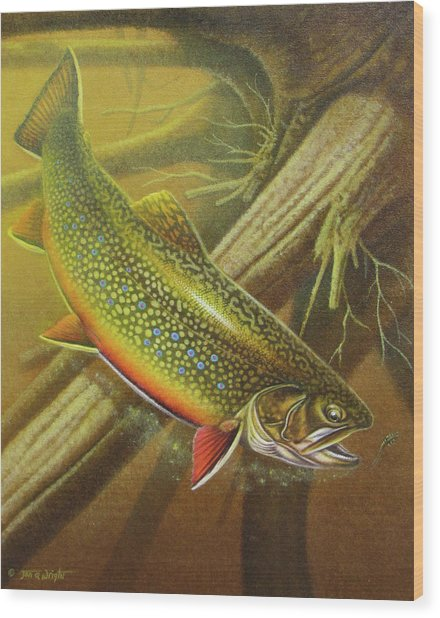 Brook Trout Cover Wood Print