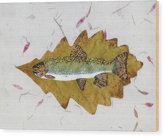 Brook Trout Wood Print