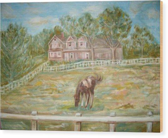 Brown And White Horse Wood Print by Joseph Sandora Jr
