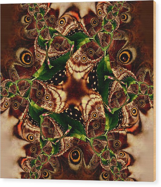 Brown Butterfly Collage Wood Print