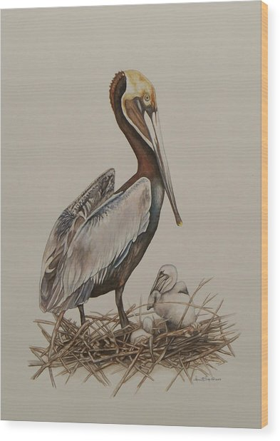 Brown Pelican And Chicks Wood Print