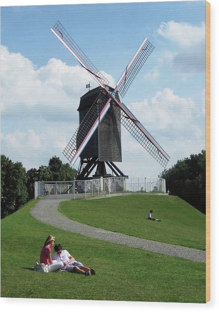 Bruges Windmill Wood Print by David L Griffin