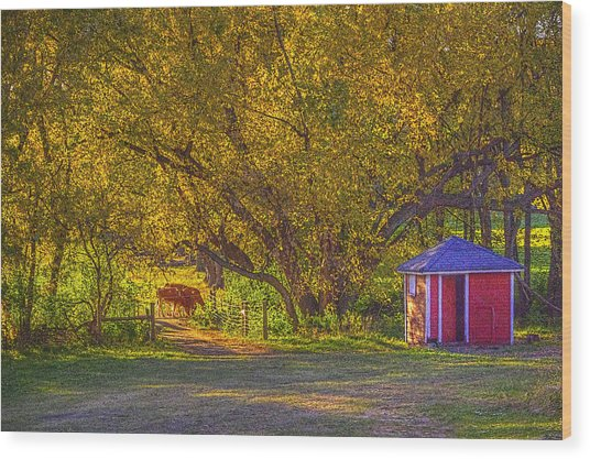Brunner Organic Family Farm Wood Print