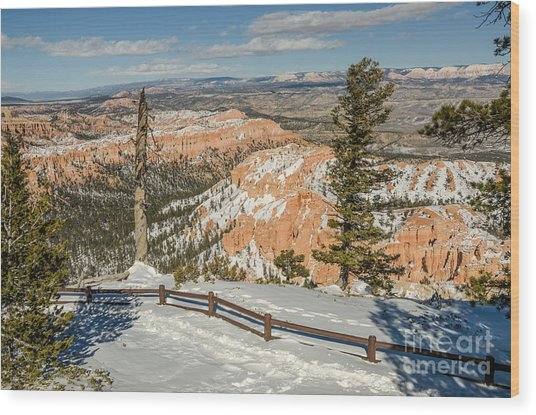 Bryce Amphitheater From Bryce Point Wood Print