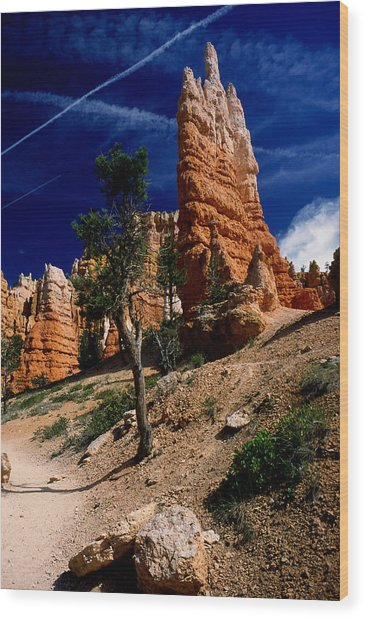Bryce Canyon 10 Wood Print by Art Ferrier