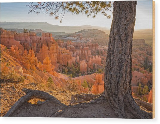Bryce Canyon National Park Sunrise 2 - Utah Wood Print