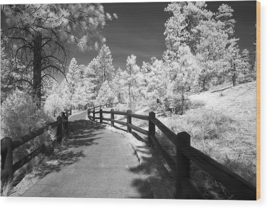Bryce Canyon Trail Wood Print by Mike Irwin