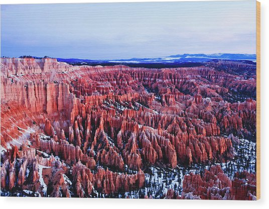 Bryce In The Morning Wood Print by E Mac MacKay