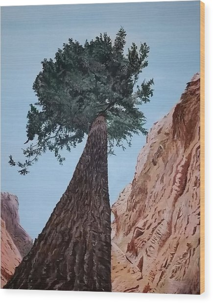 Wood Print featuring the painting Bryce Pine by Kevin Daly