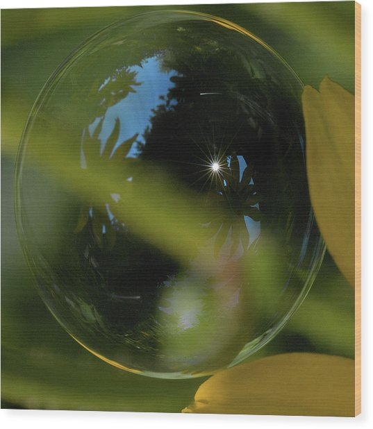Bubble In The Garden Wood Print