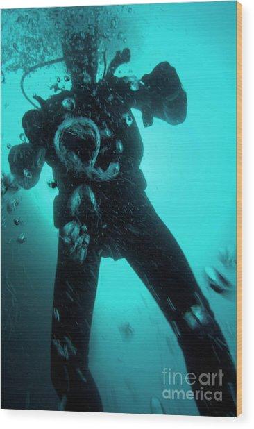 Bubbles Surrounding A Scuba Diver Underwater Wood Print by Sami Sarkis
