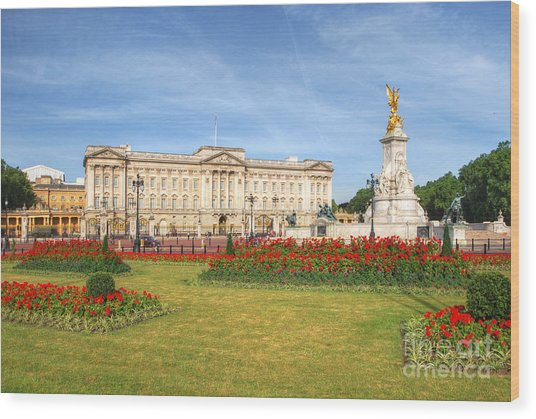 Buckingham Palace And Garden Wood Print