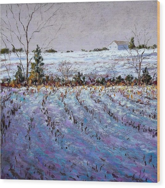 Bucks County January Fields Wood Print by Bob Richey