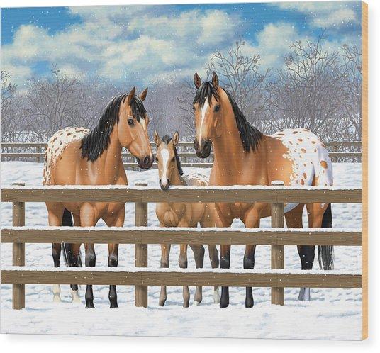 Buckskin Appaloosa Horses In Snow Wood Print by Crista Forest