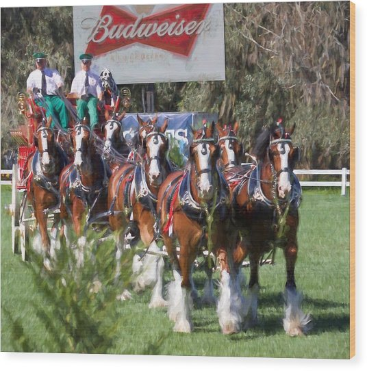 Budweiser Clydesdales Perfection Wood Print