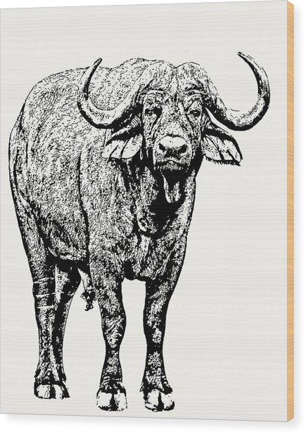 Buffalo Bull, Full Figure Wood Print
